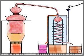 Immagini relative a distillatore per grappa